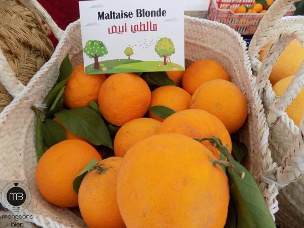 Maltaise